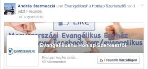 stermFacebook2010